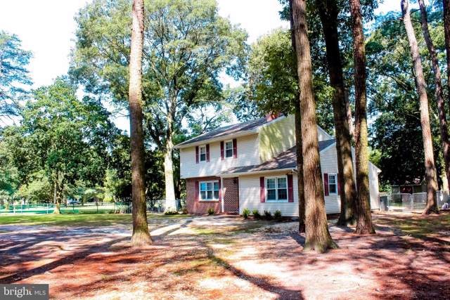 6611 Quercus Drive, HEBRON, MD 21830 (#MDWC104200) :: The Windrow Group