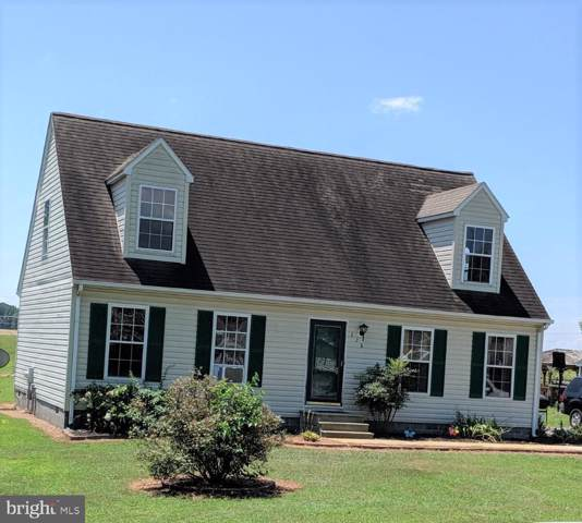 228 Apple Lane, PRESTON, MD 21655 (#MDCM122650) :: RE/MAX Coast and Country