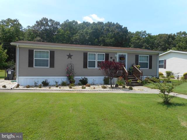 5212 Sunflower Lane, LINKWOOD, MD 21835 (#MDDO123872) :: LoCoMusings