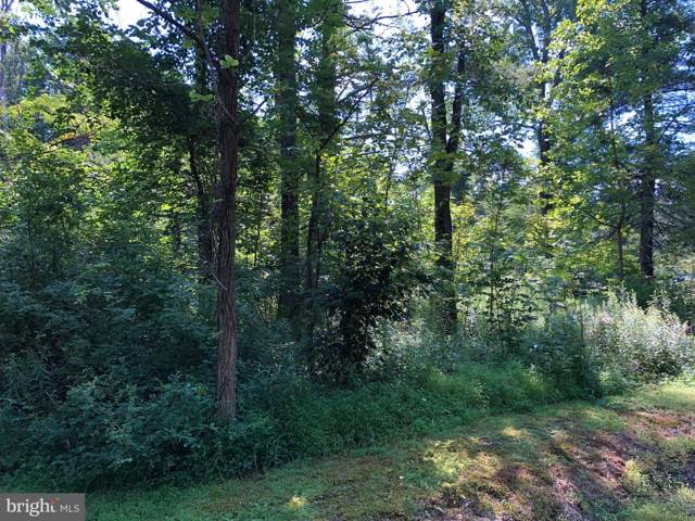 Rippling Waters Lane, GREAT CACAPON, WV 25422 (#WVMO115672) :: AJ Team Realty