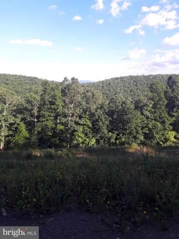 0 Forest Ridge Trail, FORT VALLEY, VA 22652 (#VASH116556) :: LoCoMusings