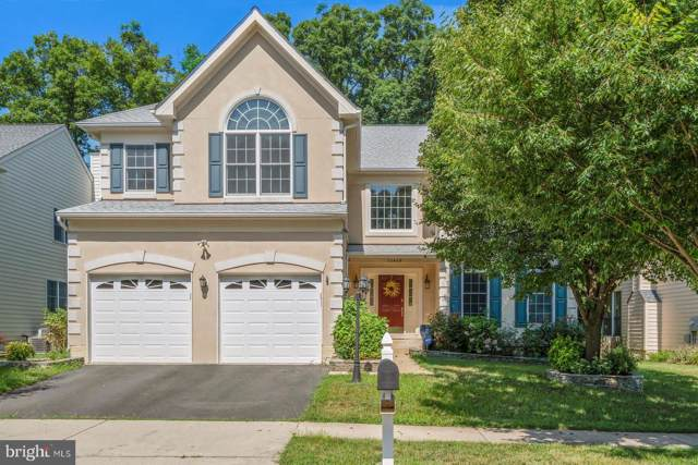 25449 Bradshaw Drive, CHANTILLY, VA 20152 (#VALO389700) :: The Licata Group/Keller Williams Realty