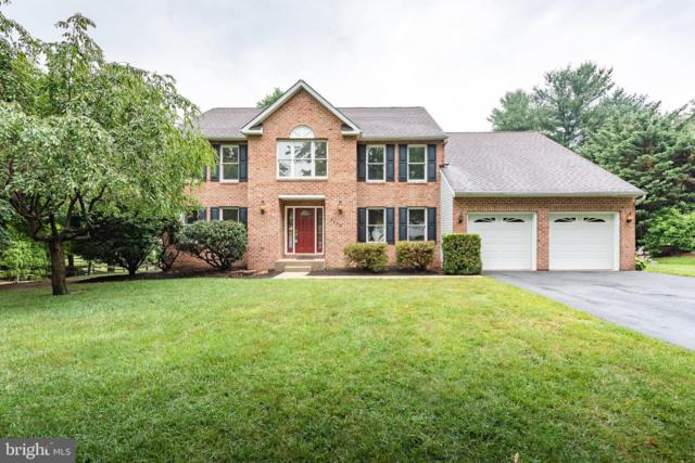3008 Patuxent Overlook Court, ELLICOTT CITY, MD 21042 (#MDHW267130) :: ExecuHome Realty