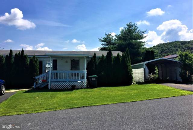 425 Frieden Manor, SCHUYLKILL HAVEN, PA 17972 (#PASK126798) :: Ramus Realty Group