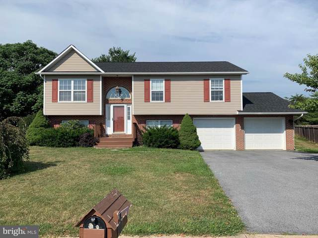 210 Lilys Way, WINCHESTER, VA 22602 (#VAFV151774) :: Bruce & Tanya and Associates