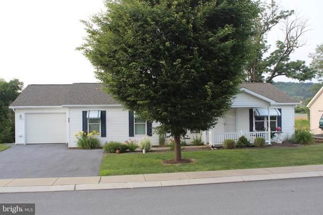 23 Millpond Drive, STEVENS, PA 17578 (#PALA136472) :: Liz Hamberger Real Estate Team of KW Keystone Realty