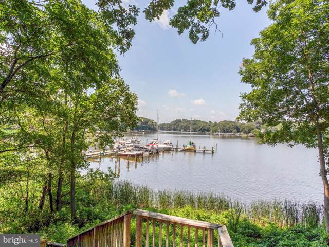 219 Lees Lane, EDGEWATER, MD 21037 (#MDAA406770) :: Bob Lucido Team of Keller Williams Integrity