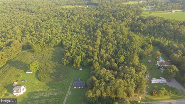 12090 Golansville Road, RUTHER GLEN, VA 22546 (#VACV120600) :: ExecuHome Realty