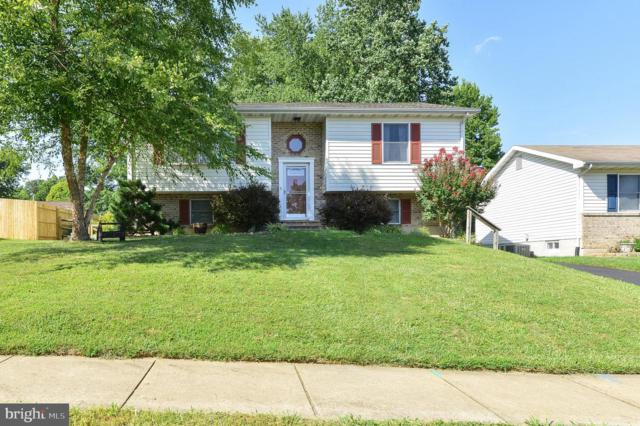 703 Gray Mount Circle, ELKTON, MD 21921 (#MDCC165236) :: Jennifer Mack Properties