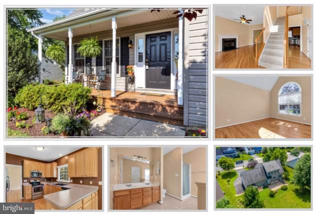 629 Elliot Drive, PURCELLVILLE, VA 20132 (#VALO390194) :: Circadian Realty Group