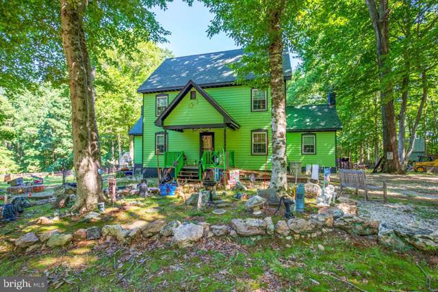 4430 E Old Mountain Road, LOUISA, VA 23093 (#VALA119582) :: Keller Williams Pat Hiban Real Estate Group