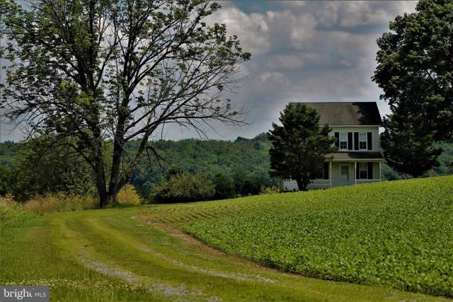 180 Mine Bank Road, WELLSVILLE, PA 17365 (#PAYK121190) :: The Joy Daniels Real Estate Group