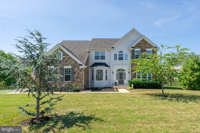 24481 Lenah Trails Place, ALDIE, VA 20105 (#VALO390236) :: ExecuHome Realty