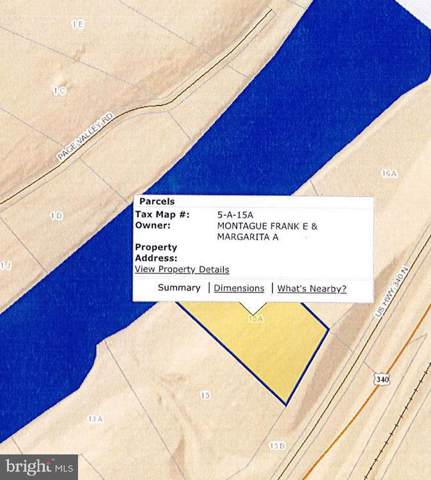 Stonewall Jackson Highway Lot 15A, RILEYVILLE, VA 22650 (#VAPA104592) :: AJ Team Realty