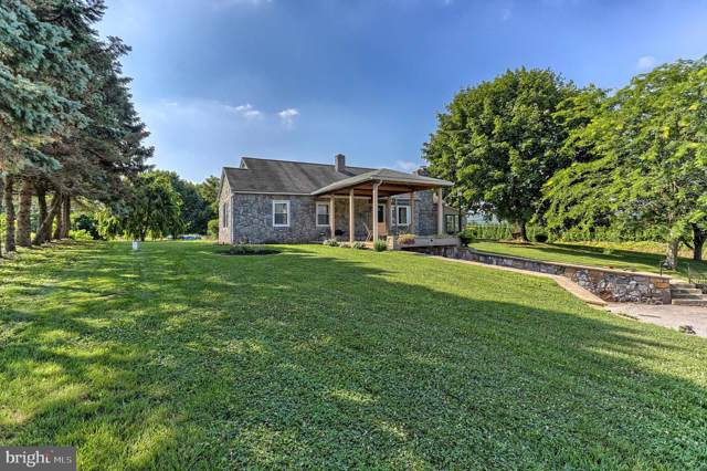 156 Big Mount Road, THOMASVILLE, PA 17364 (#PAYK121268) :: The Joy Daniels Real Estate Group