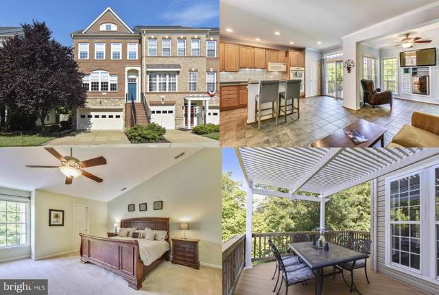 21935 Windy Oaks Square, BROADLANDS, VA 20148 (#VALO390348) :: The Greg Wells Team
