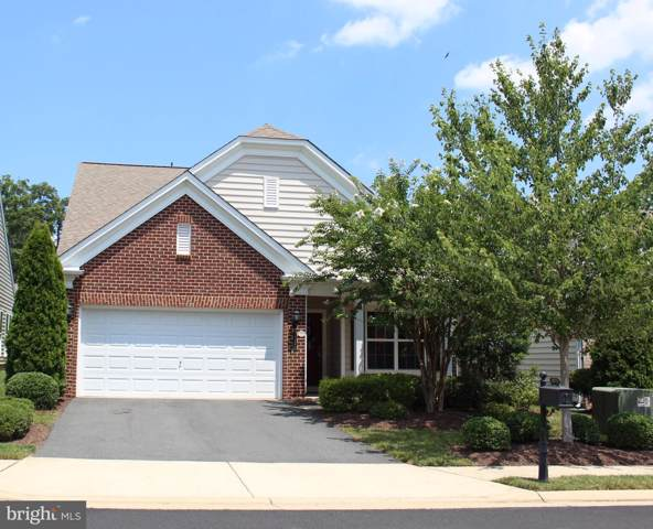 20396 Oyster Reef Place, ASHBURN, VA 20147 (#VALO390364) :: Circadian Realty Group