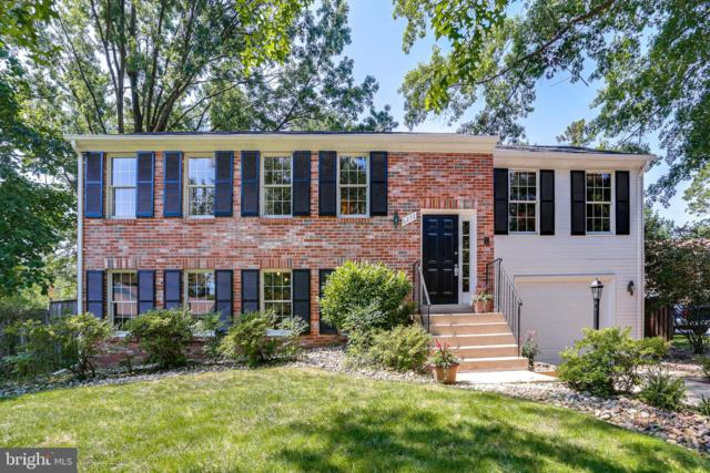 6272 Dusty Glass Court, COLUMBIA, MD 21044 (#MDHW267488) :: The Daniel Register Group