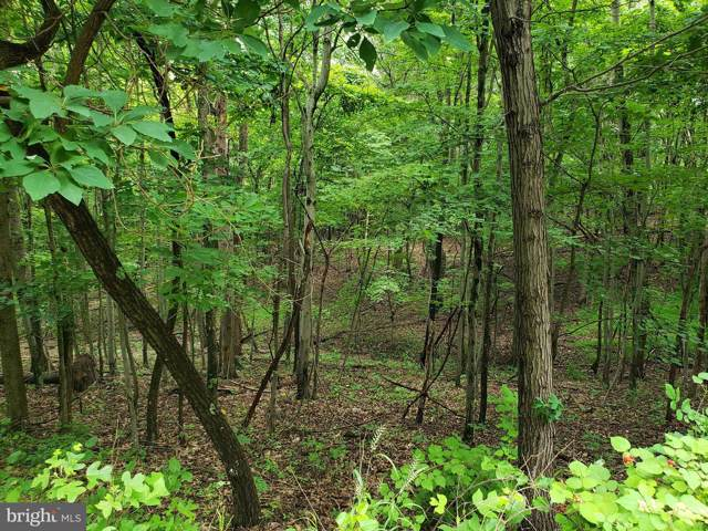 Lot 18 Gaither Road, GREAT CACAPON, WV 25422 (#WVMO115702) :: Jim Bass Group of Real Estate Teams, LLC