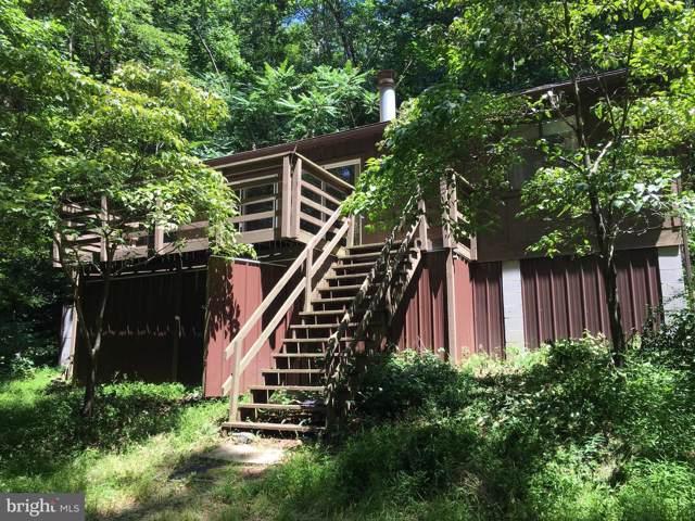 180 Lake Road, STANLEY, VA 22851 (#VAPA104606) :: Radiant Home Group