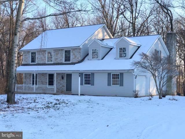 3 Winding Way, DENVER, PA 17517 (#PALA136900) :: Liz Hamberger Real Estate Team of KW Keystone Realty