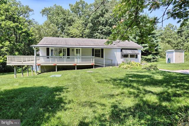 203 Whiskey Springs Road, DILLSBURG, PA 17019 (#PAYK121480) :: The Dailey Group