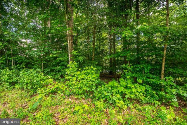 401 Land Or Drive, RUTHER GLEN, VA 22546 (#VACV120638) :: Pearson Smith Realty