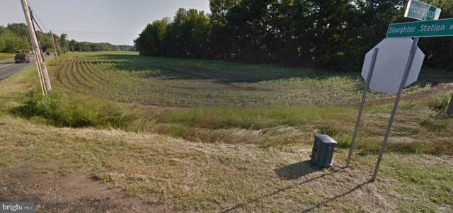 1522 Slaughter Station Road, HARTLY, DE 19953 (#DEKT230894) :: The Windrow Group