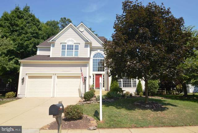 21345 Clappertown Drive, ASHBURN, VA 20147 (#VALO390644) :: The Greg Wells Team