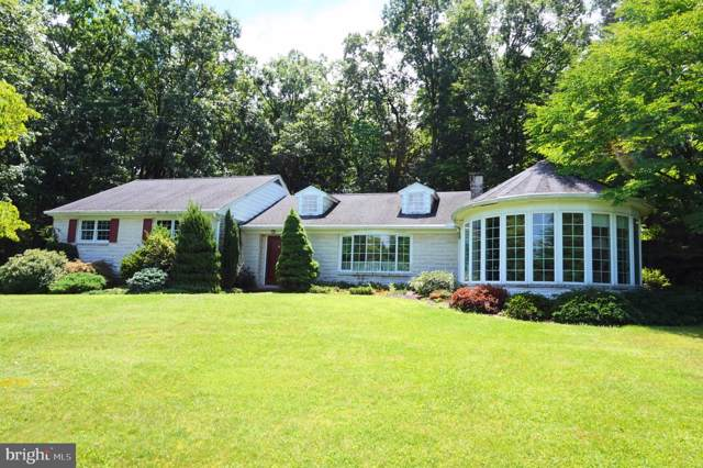 182 Green Acres Avenue, ELIZABETHVILLE, PA 17023 (#PADA112844) :: Pearson Smith Realty