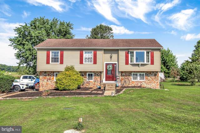 1595 Detters Mill Road, DOVER, PA 17315 (#PAYK121530) :: The Dailey Group