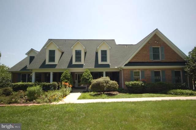 17022 Simmental Lane, ROUND HILL, VA 20141 (#VALO390790) :: Peter Knapp Realty Group