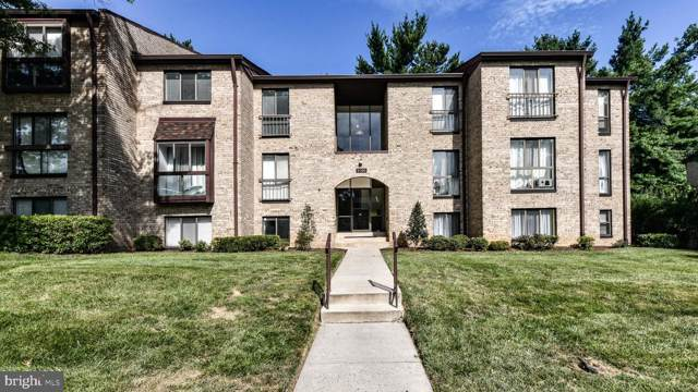 2066 Royal Fern Court 21B, RESTON, VA 20191 (#VAFX1079010) :: Colgan Real Estate