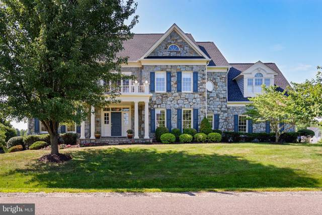 40223 Browns Creek Place, LEESBURG, VA 20175 (#VALO390818) :: The Putnam Group