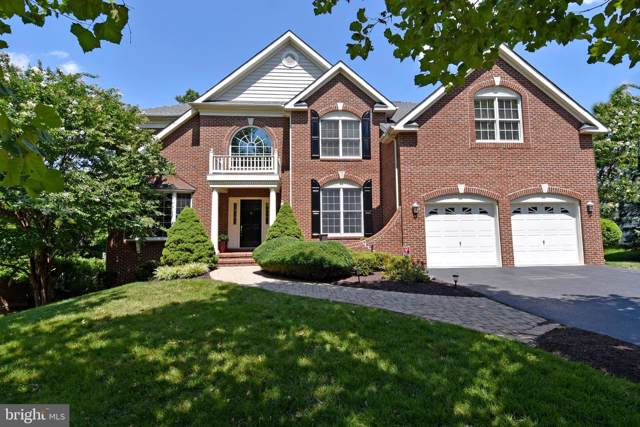 19700 Stanford Hall Place, ASHBURN, VA 20147 (#VALO390858) :: The Greg Wells Team