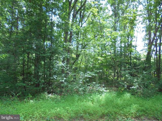 New Hampshire Road #31, RHOADESVILLE, VA 22542 (#VAOR134578) :: Network Realty Group