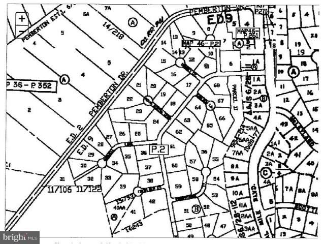 LOT 64 Earldom Lane, SALISBURY, MD 21801 (#MDWC104436) :: Shamrock Realty Group, Inc