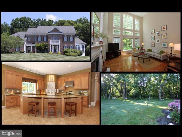 4303 Saratoga Springs Court, MIDDLETOWN, MD 21769 (#MDFR250658) :: Great Falls Great Homes