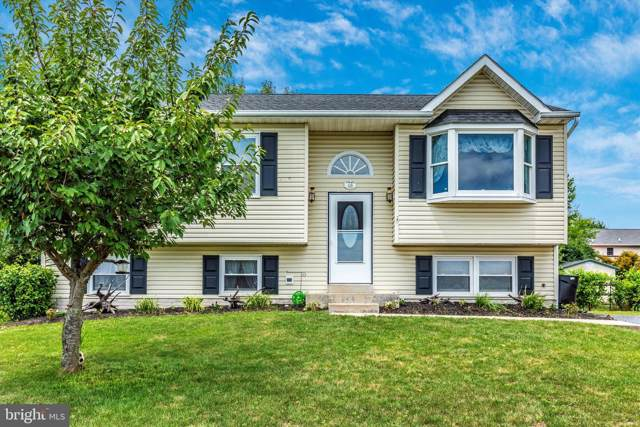 106 Victor Drive, THURMONT, MD 21788 (#MDFR250664) :: Arlington Realty, Inc.