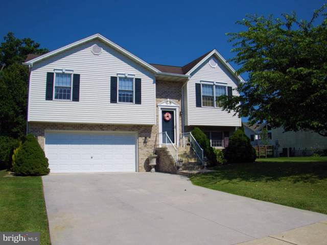11 Trenton Court, LITTLESTOWN, PA 17340 (#PAAD107960) :: The Joy Daniels Real Estate Group