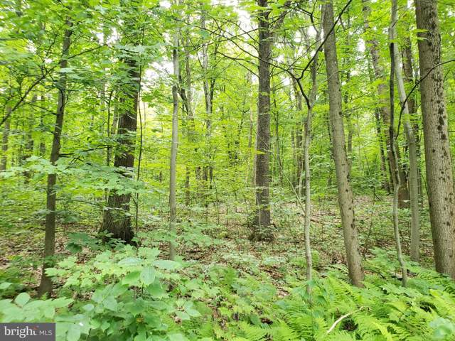 0 Wildcat Trail, LIVERPOOL, PA 17045 (#PAPY101126) :: The Craig Hartranft Team, Berkshire Hathaway Homesale Realty