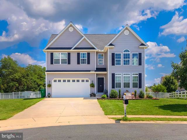 149 Abigail Lane, MAGNOLIA, DE 19962 (#DEKT231014) :: The Dailey Group