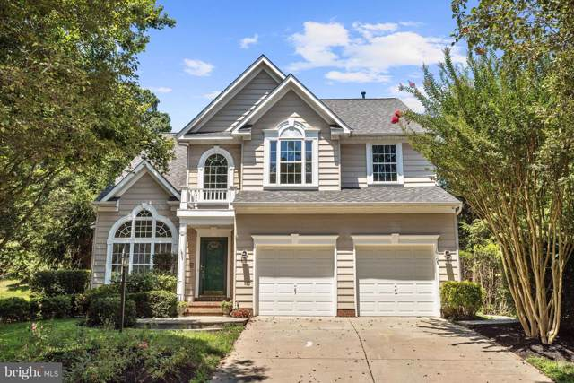 6105 Rippling Waters Walk, CLARKSVILLE, MD 21029 (#MDHW267834) :: Blue Key Real Estate Sales Team