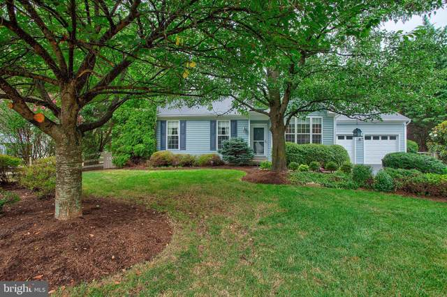 17307 Bighorn Court, ROUND HILL, VA 20141 (#VALO391008) :: Peter Knapp Realty Group
