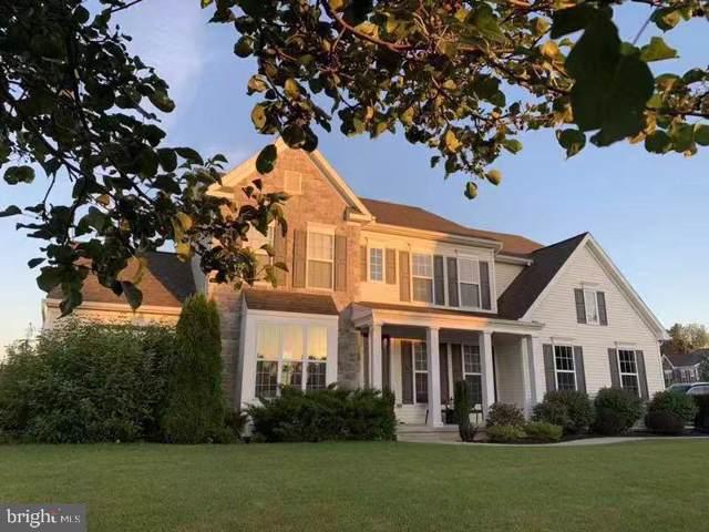 914 Powder Horn Drive, HUMMELSTOWN, PA 17036 (#PADA113010) :: The Joy Daniels Real Estate Group