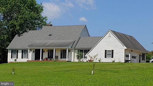 19424 Thoroughfare Lane, CULPEPER, VA 22701 (#VACU139134) :: Network Realty Group