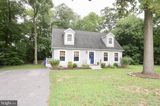 102 Deer Run, DAGSBORO, DE 19939 (#DESU144908) :: CoastLine Realty