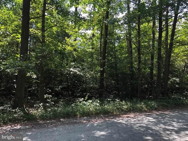 11349 Jackson Trail E, SPOTSYLVANIA, VA 22553 (#VASP214794) :: AJ Team Realty
