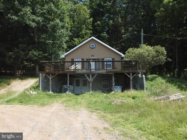 163 Buck Hill Lane, SUGAR GROVE, WV 26815 (#WVPT101262) :: Keller Williams Pat Hiban Real Estate Group