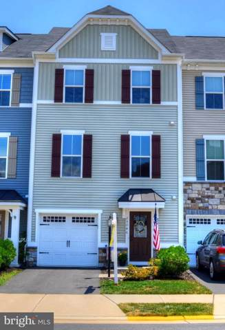 25046 Mcculley Terrace, ALDIE, VA 20105 (#VALO391480) :: The Sky Group